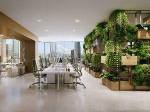 thiết kế văn phòng xanh